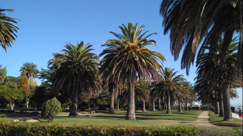 Park La toja