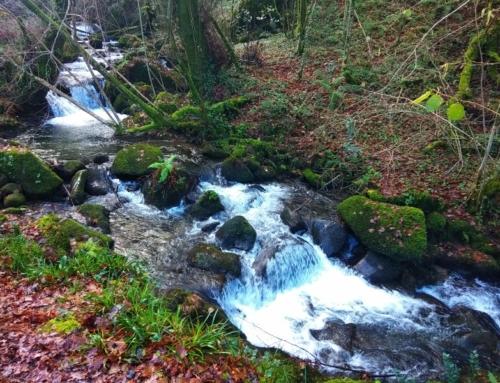 Route door het sprookjesbos van steen en water