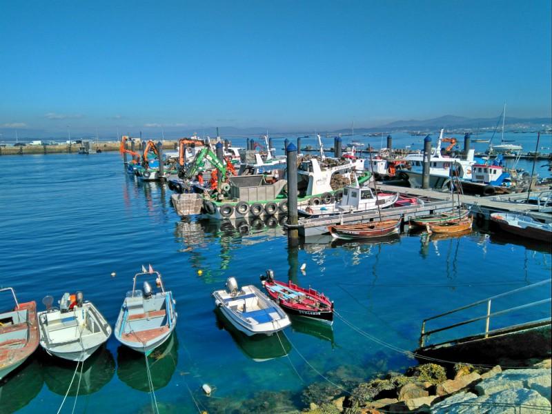 De haven in O Grove, van dagelijks belang