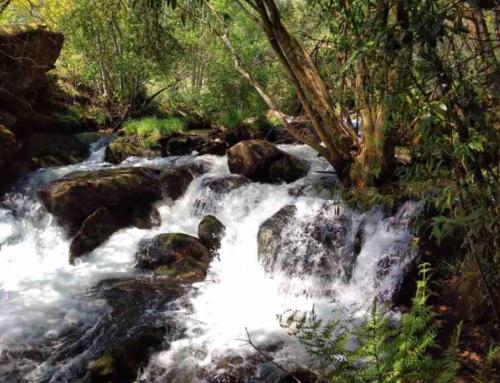 Natuurpark Río Barosa, 17 molens en een waterval