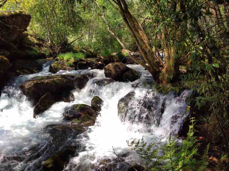 Mooie plaatjes in het natuurpark Río Barosa