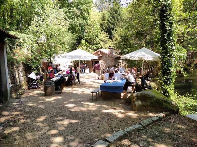 Picknickzone in het park