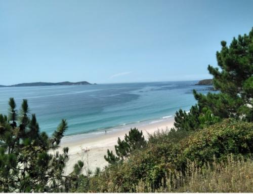 Het strand van Montalvo