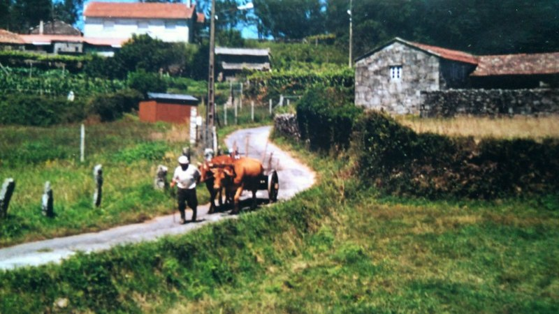 Emigreren naar Galicië