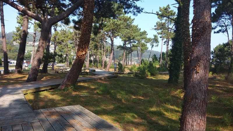 Picknickplaats bij strand van Abrela