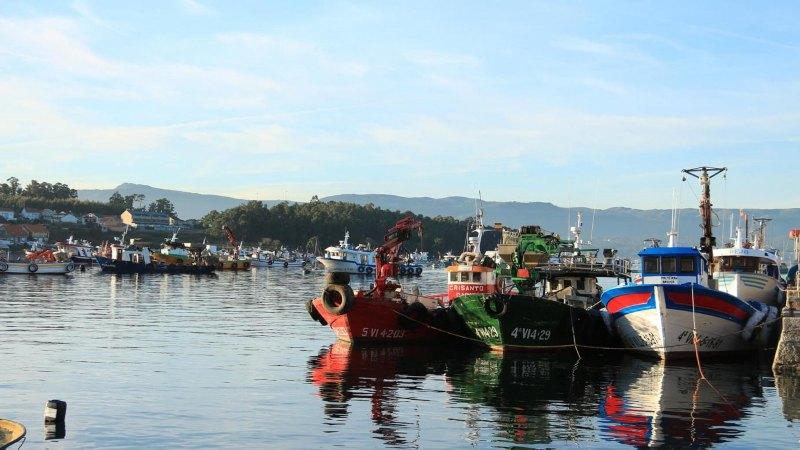Mosselindustrie Galicië