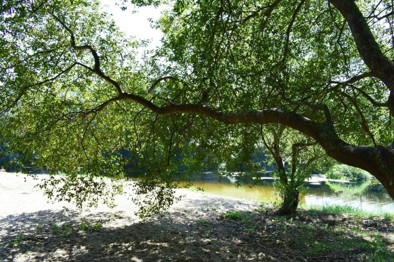 Standvakantie aan de rivier