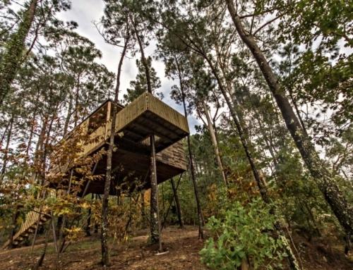 Bijzonder slapen in een boomhut in Galicië
