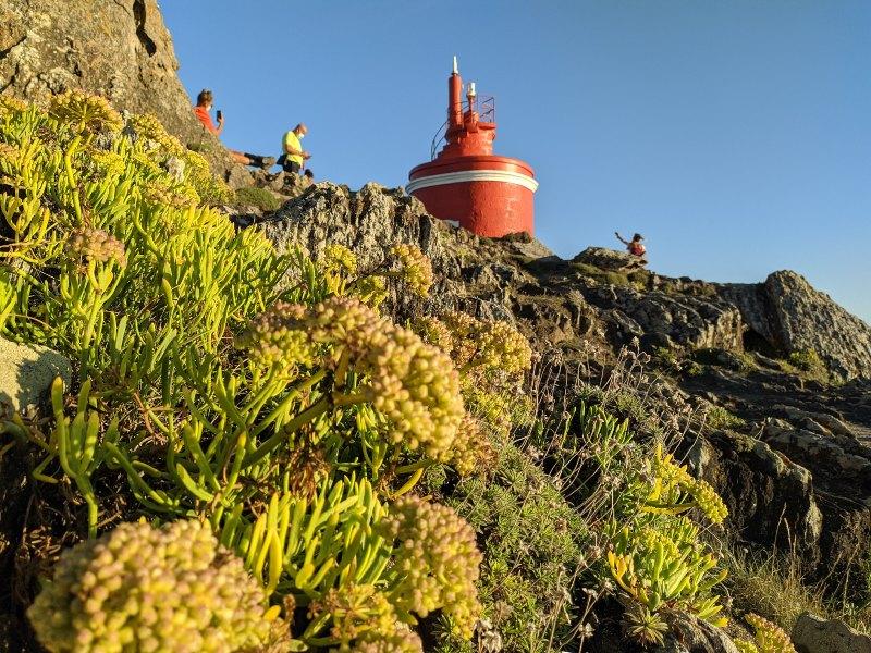 Robaleiro op Cabo Home